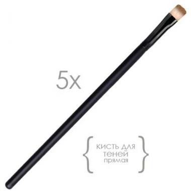 Кисть для теней скошенная упаковка 5 шт (SY-12)